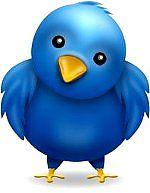 Плагин автоматического постинга в Twitter для Textpattern